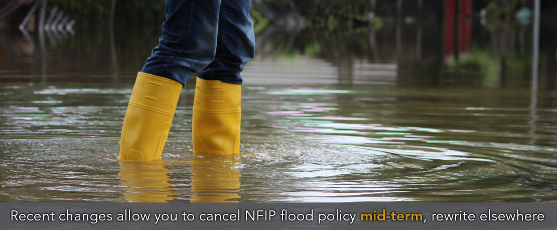 BLOG_RECENT CHANGES ALLOW YOU TO CANCEL NFIP FLOOD POLICY MID-TERM, REWRITE ELSEWHERE