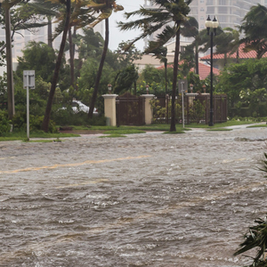 BLOG_Everyone in Florida is at risk of flooding, even if you live inland_thumb