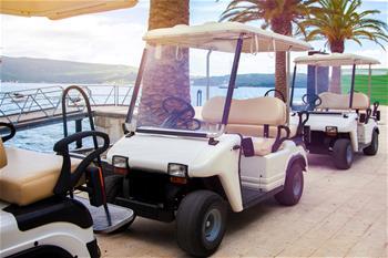 Multiple Florida Home Insurance Options | AIIG on golf words, golf card, golf cartoons, golf trolley, golf handicap, golf players, golf girls, golf hitting nets, golf machine, golf buggy, golf tools, golf games, golf accessories,